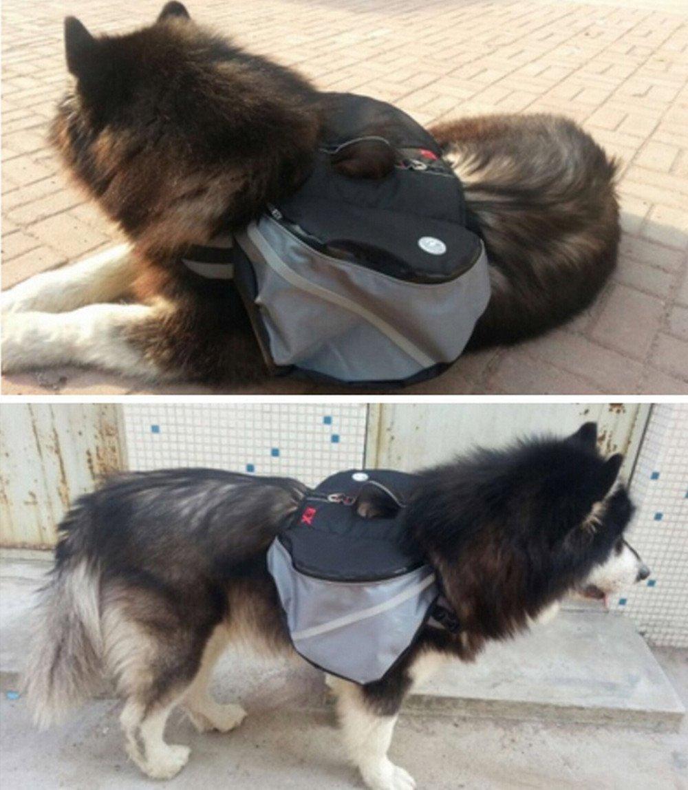 Grey M grey M Dog Outward Hound Saddle Bags Dog Backpacks for Hiking or Camping (M, Grey)