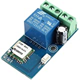 WHDTS WiFi Switch Relay Momentary Inching & Self-Locking Relay Delay Switch Module Smart Home Remote Control DC 12V Compatibl