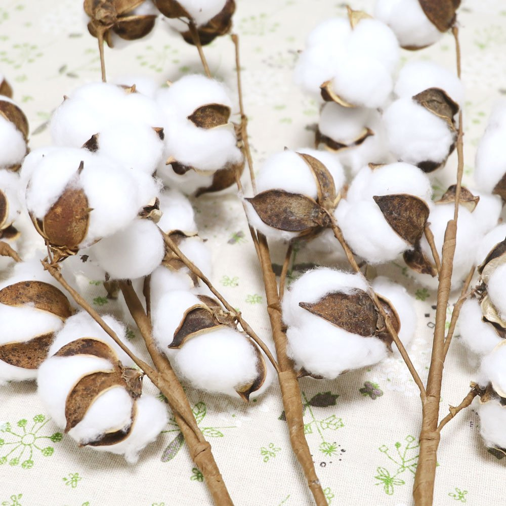 23 Inch Farmhouse Display Filler-Foral Decoration 3 Pack 10 Balls Per Stem Coceca Cotton Stems