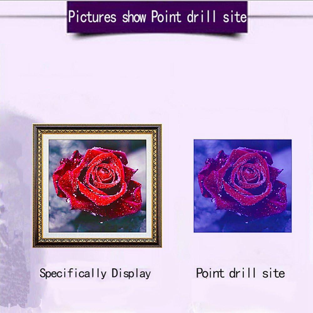 DIY Diamant Dessin Color/é Fleur Plante Photos Broderie kit de Point de Croix D/écoration Murale pour la Maison Salon TONVER 5d Diamant kit de Peinture Rose Rouge//–/20*20/cm