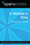A Wrinkle in Time (SparkNotes Literature Guide) (SparkNotes Literature Guide Series)
