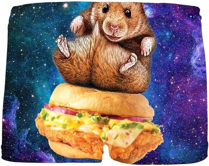 5T-2XL INTERESTPRINT Boys Funny Hamster Sitting on Hamburger Boxer Brief Underwear