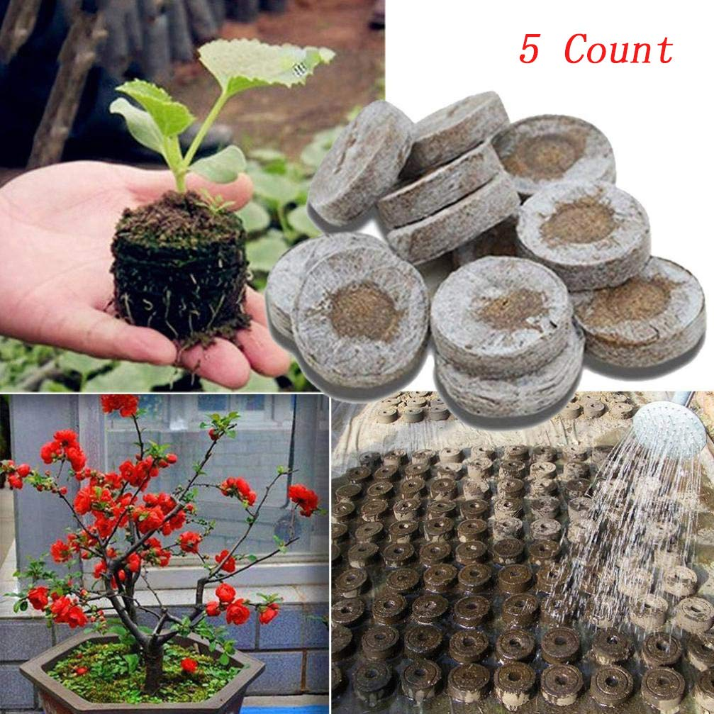 Transer 5 Count Peat Pellets, Seed Starter Soil Plugs Start Seedlings Indoors, Easy to Transplant to Garden (5, Coffee)