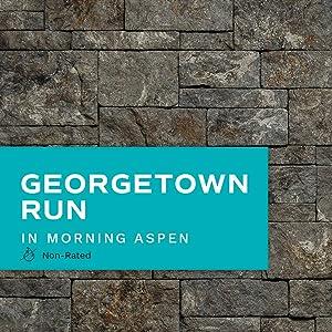 Evolve Stone Georgetown Run MA Non-Rated Flat Stone Veneer (14.25 sq. ft. per Box)