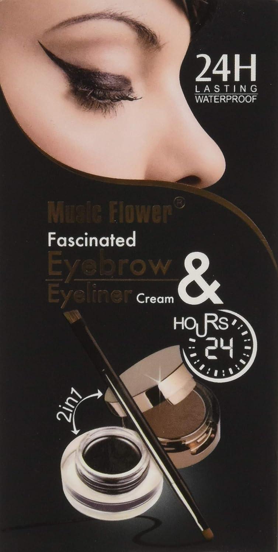 Amazon 4 In 1 Gel Eyeliner And Eyebrow Powder Kit Brown Black