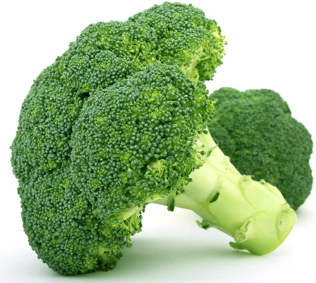 Broccoli Vitamin Seeds for Planting Around 100 Seeds