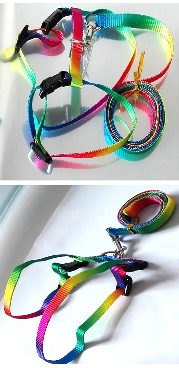 Rabbit Harness Lead Leash Soft Nylon, Adorable Colorful Rainbow Adjustable Harness Collar, Outdoor Walking Buckle Leash Hypeety