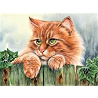 DIY oil painting Paint by number kit per bambini adulti principianti 40,6x 50,8cm–Gatto, disegno con spazzole Christmas Decor Decorations Gifts