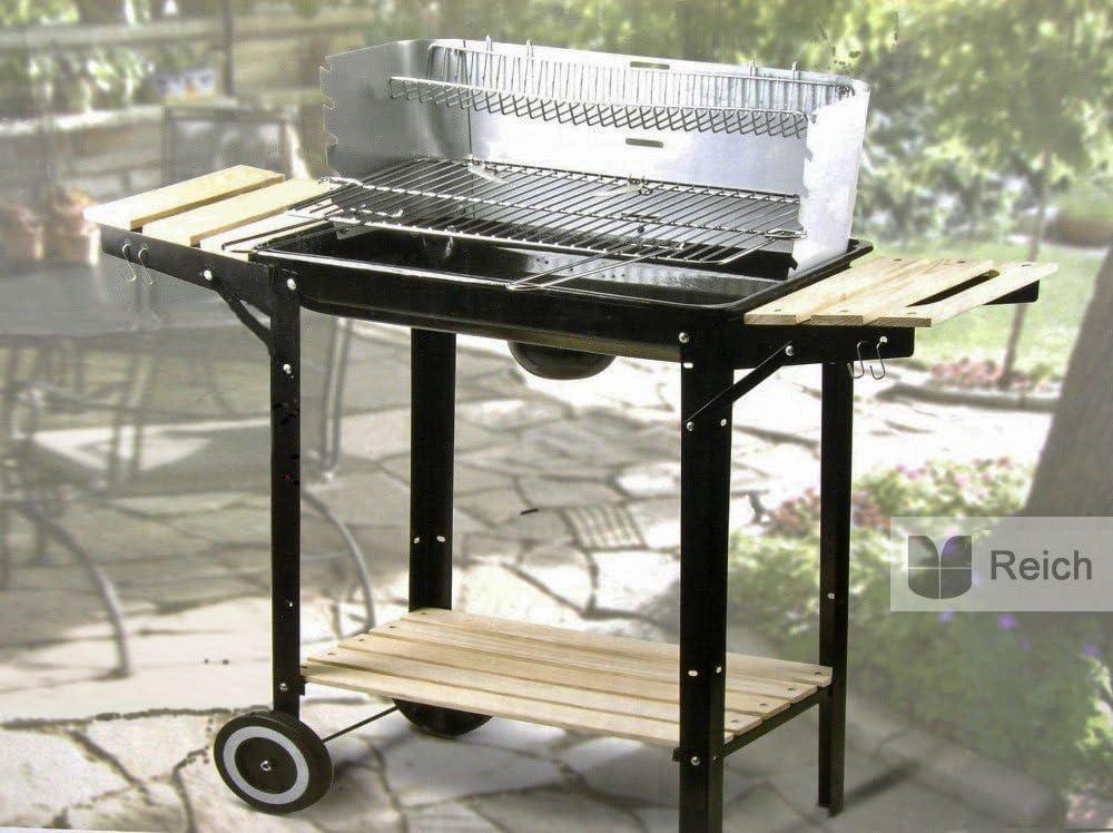 Barbecue au charbon de bois Grill Barbecue Chariot à surface de cuisson 48 x 26 cm 2 plateaux