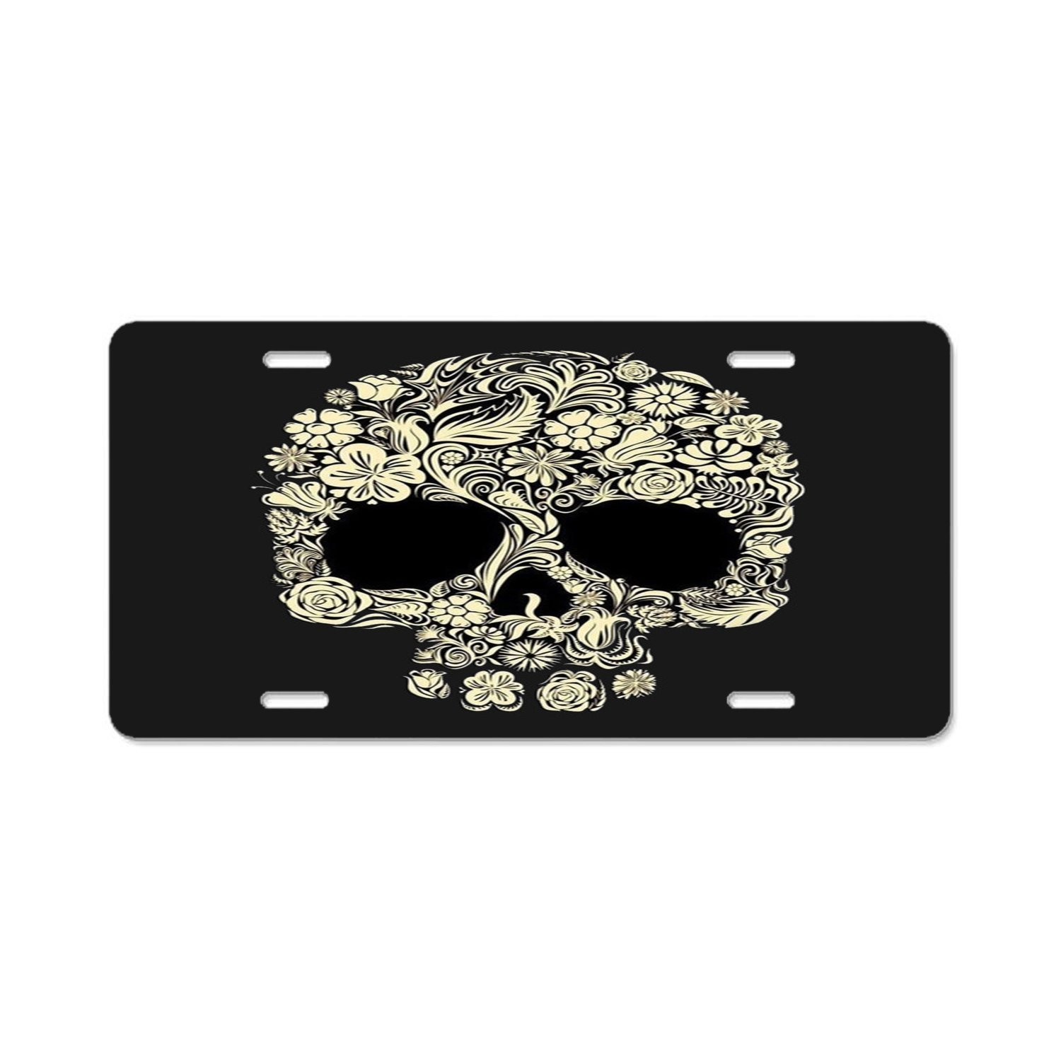 Ayibagexi Florida License Plate Frame - Plate Holder for American Universal Car Tag