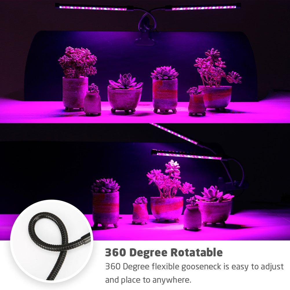 AMAZINGCATS 2018 Upgraded Lampe /à Double t/ête 18 W Timing Grow 36 LED avec Rouge//Bleu Spectrum pour Plantes dint/érieur Col de Cygne r/églable 3//6//12H 5 Niveaux