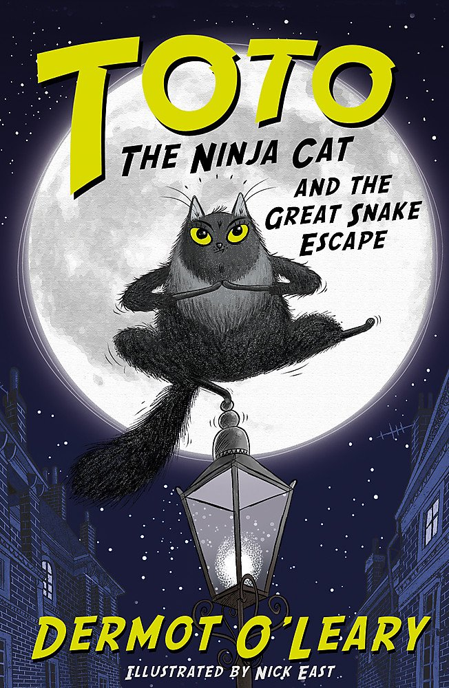 Toto the Ninja Cat and the Great Snake Escape: Book 1: Amazon.co.uk:  O'Leary, Dermot, East, Nick: 9781444939453: Books