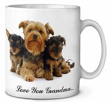 Yorkshire Terrier Love You Grandma Kaffeetasse Geburtstag