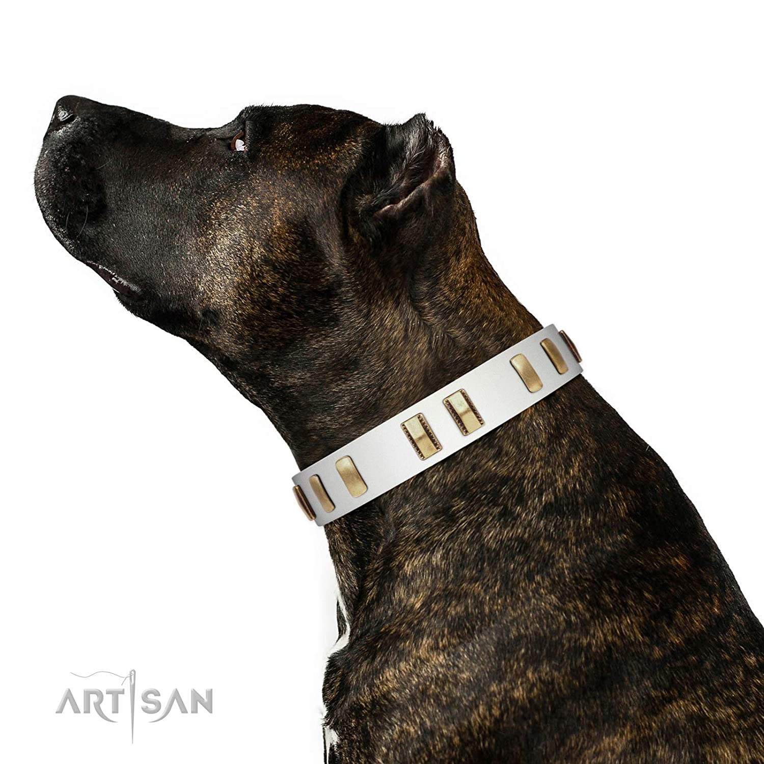 Fits for 36 inch (90cm) dog's neck size FDT Artisan 36 inch White Leather Collar with Vintage Old Bronze-Like Plates in Box Glorious Light 1 1 2 inch (40 mm) Wide