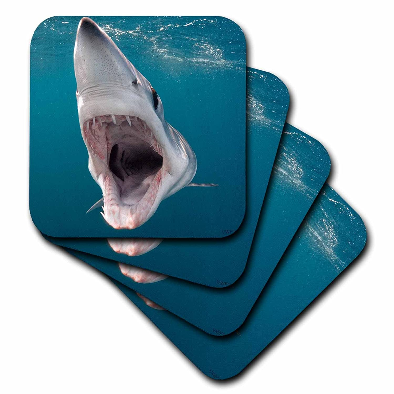 Amazon.com: vwpics Tiburones – shortfin Mako Shark con boca ...