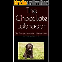 The Chocolate Labrador: The Chocolate Labrador in Photographs