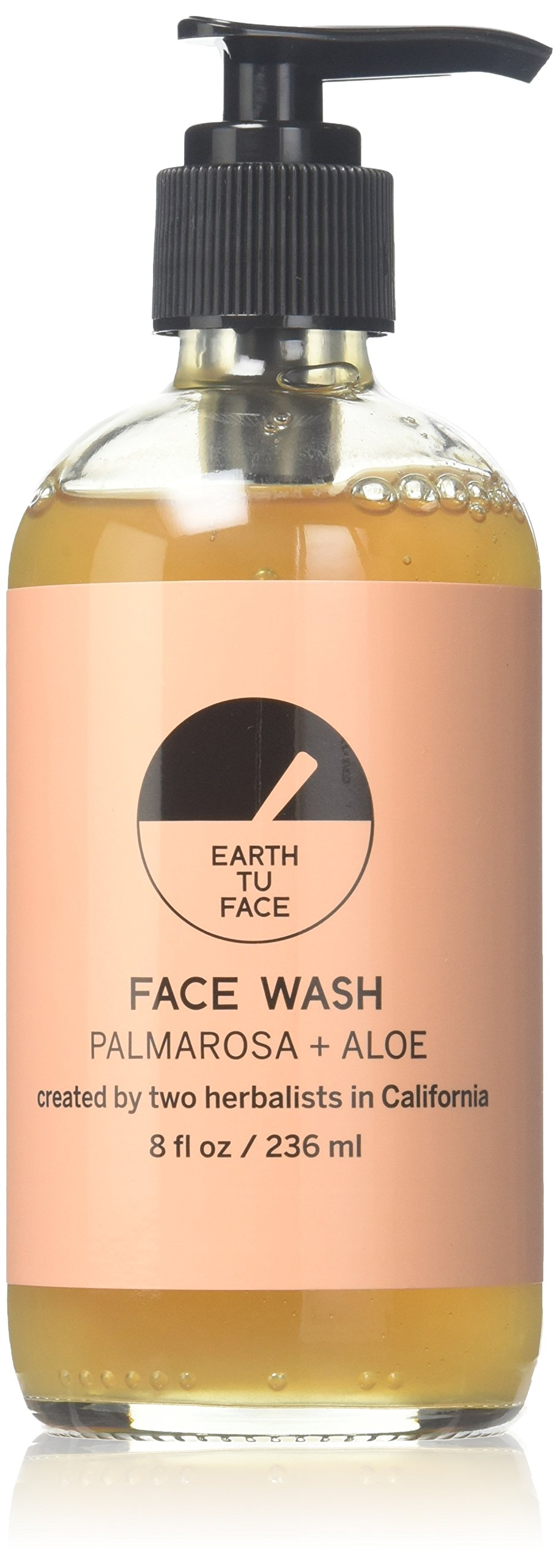 Earth tu Face Organic Palmarosa + Aloe Face Wash