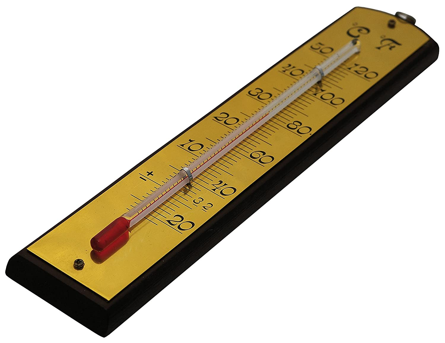Biotop Wall Thermometer for Indoor & Outdoor, with Metal Sheet, 1 x ...