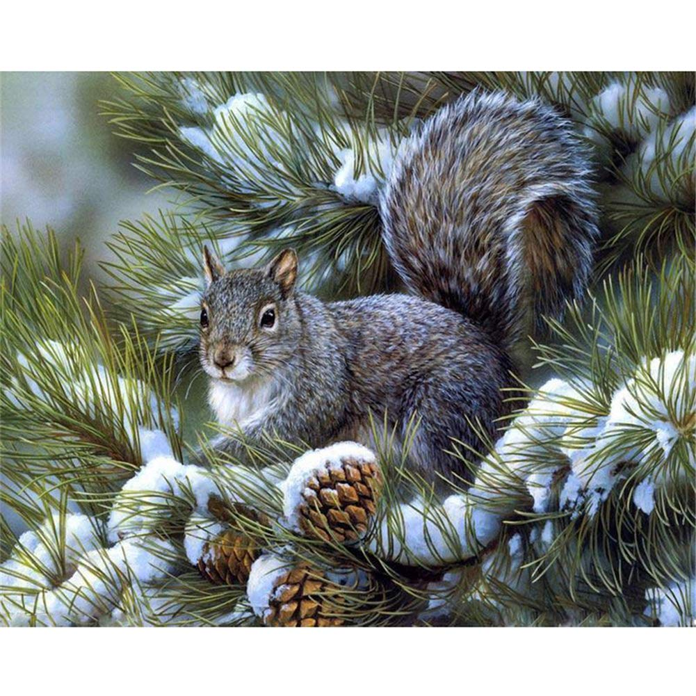 5D Diamond Painting Kits Full Drill DIY Rhinestone Embroidery Cross Stitch Arts Craft for Home Wall Decor Gift squirrel 40x30cm