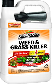 Spectracide HG-96017 1-Gallon Ready to Use Weed & Grass Killer