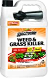Spectracide Weed & Grass Killer2 (Ready-to-Use) (HG-96017) (1 gal)