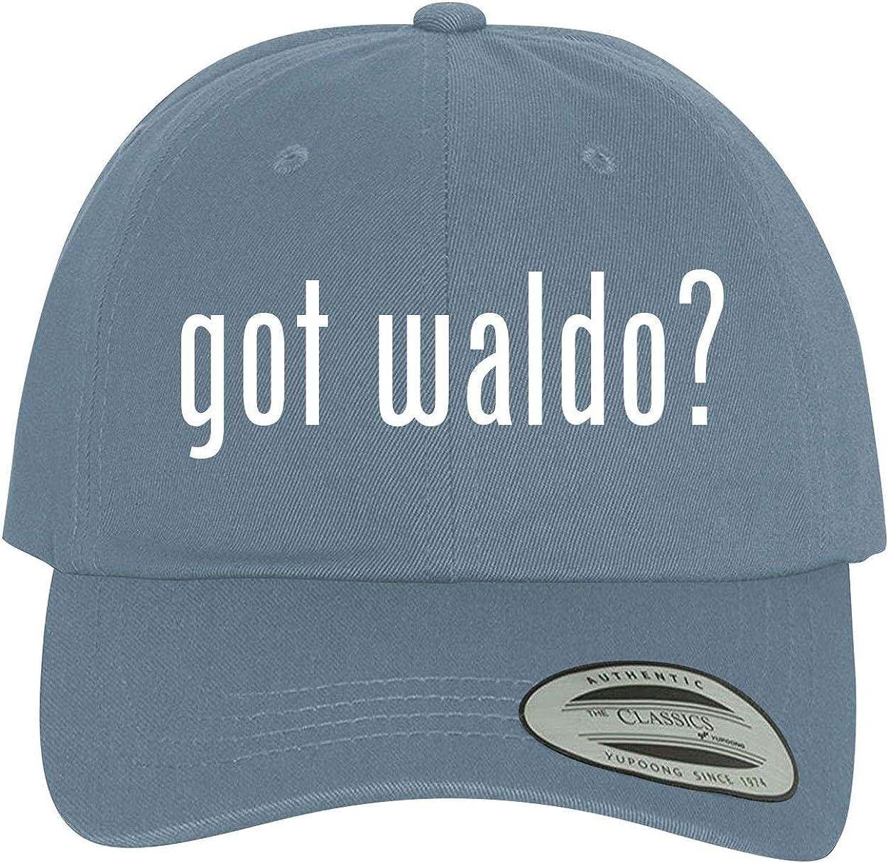 Comfortable Dad Hat Baseball Cap BH Cool Designs got Waldo?