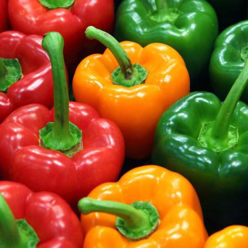 30 SeedsUP Vegetable Mix Bell Pepper Sweet Rainbow for Pots