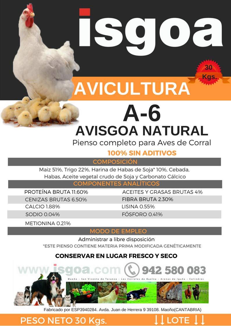 Mezcla MULTICEREALES para Gallinas, Pollos. Saco 30 Kg Isgoa: Amazon.es: Jardín