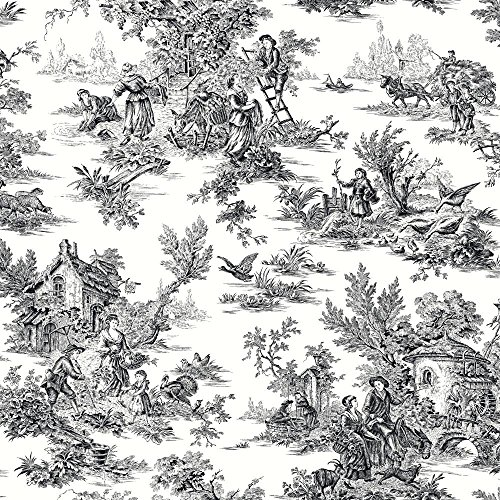York Wallcoverings Black & White AT4228 Champagne Toile Wallpaper,