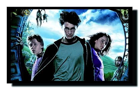 Ravgar Harry Potter Ron Weasley Hermione Granger Canvas