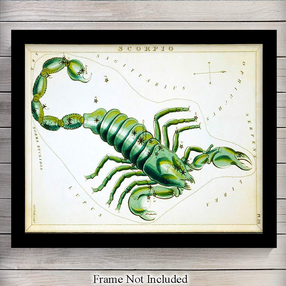 Vintage Scorpio Astrological Zodiac Chart - Great Gift and Chic Home Decor - Stars - Ready to Frame (8x10) Photo