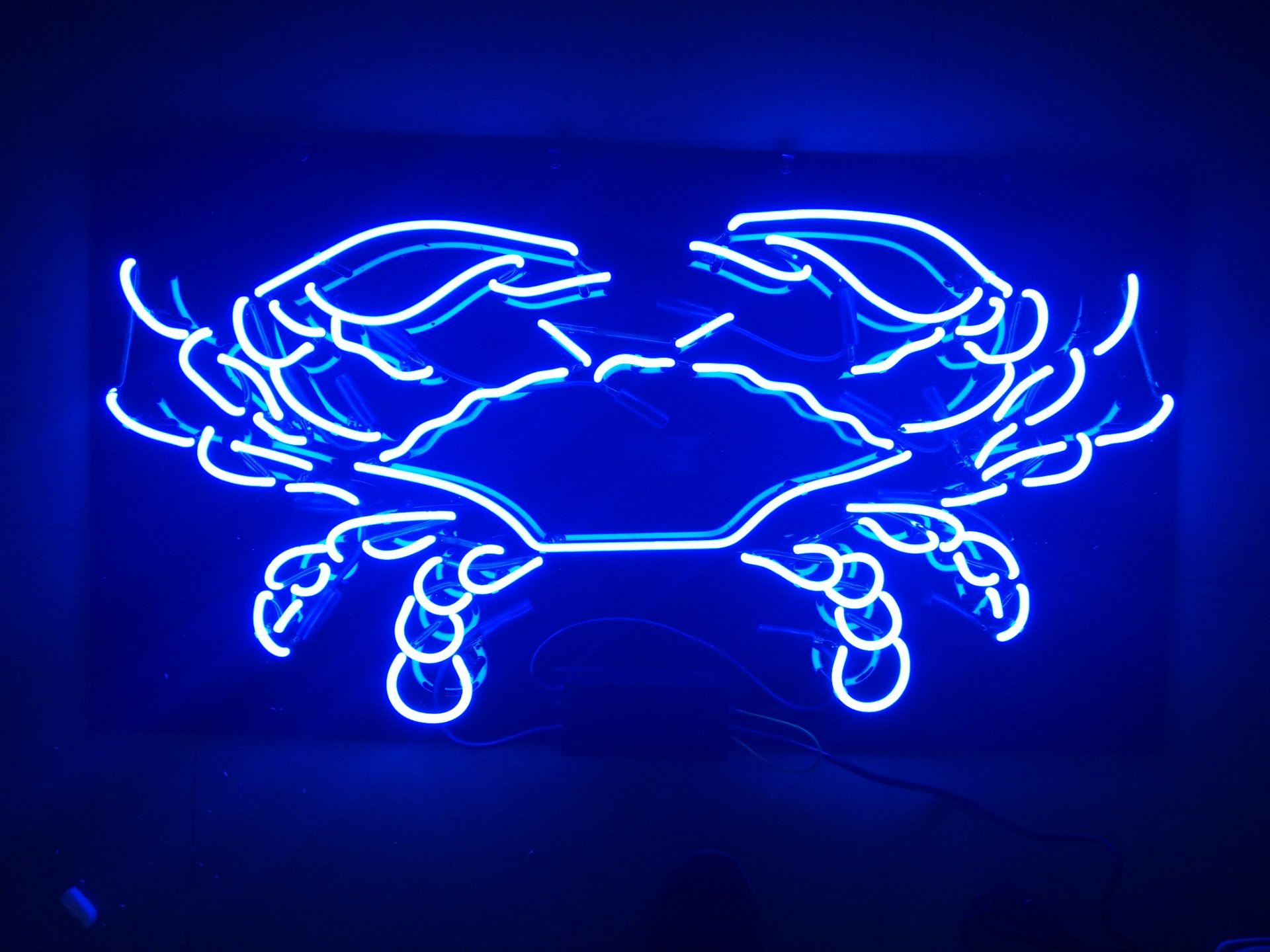 LinC Neon Sign- Crab Home Decor Light for Bedroom Garage Beer Bar and Nightclub, Real Glass Neon Light Sign for Wall Decor Art (Crab)