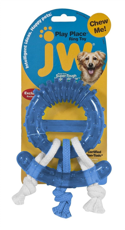 JW Pet Ring Thing Toy
