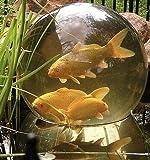 Aquatic Add-A-Sphere Fish Dome/Sphere