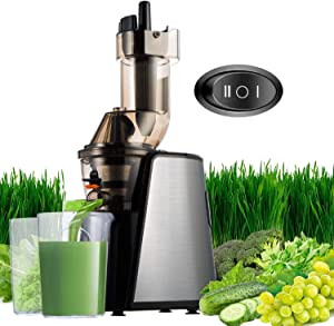 Masticating Juicer Cold Press Slow Juice Extractor 150W Easy to Clean Extraction Creates Fruit Juice Machine, Quiet Motor and Reverse Function