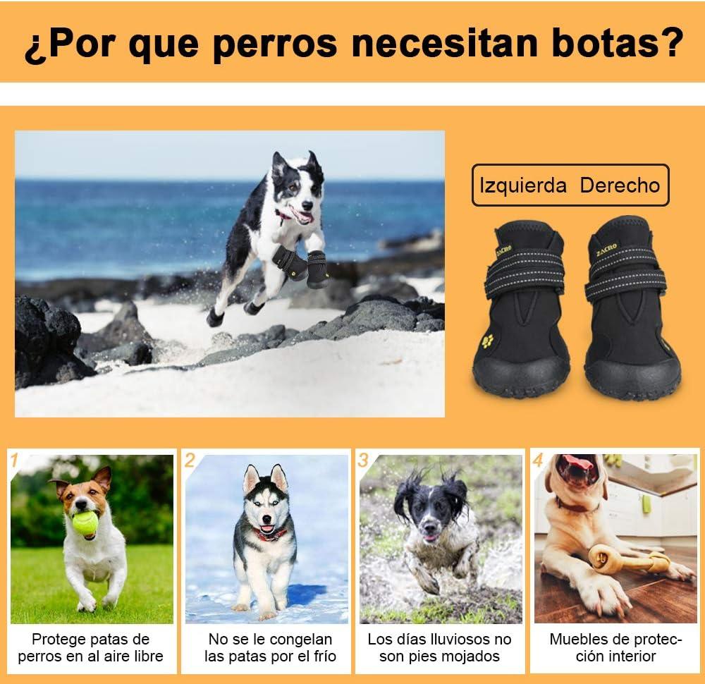 Zacro 4pcs Botas Perros,Protectores Patas para Perro, Zapatos Impermeable para Mediano y Grandes Perros,de 2 Reflecante Bandas,Suela Antideslizante y Estable,Negro,4#: Amazon.es: Productos para mascotas