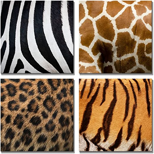 "12/""x12/"" x 4 Animal Fur// Skin Texture Zebra,Leopard,Giraffe,Tiger Canvas"