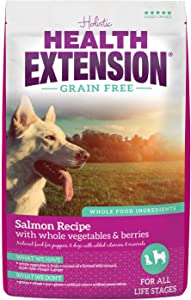 Health Extension Grain Free Dry Dog Food - Salmon Recipe