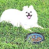 Slow Feeder Dog Bowl, BPA-Free Fun Feeder