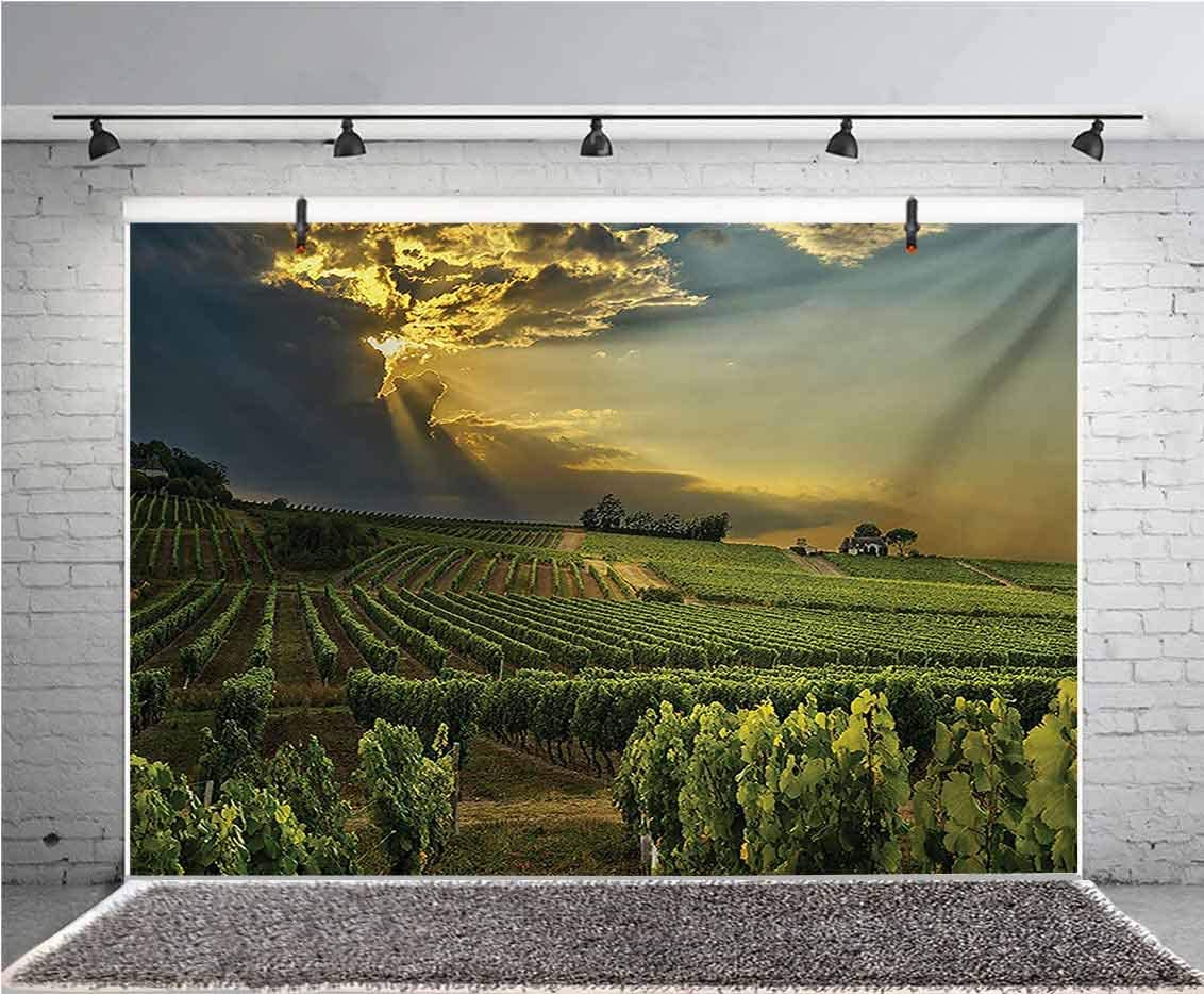 GoEoo 7x5ft Building Backdrop French Winery Unique Photography Background and Photography Studio Backdrop Props LYLX156