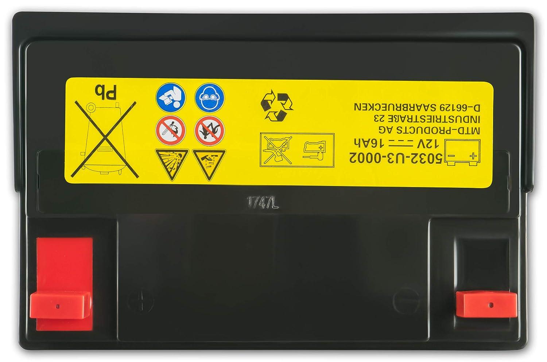MTD - Batería para tractor cortacésped 5032-U3-0002 MTD: Amazon.es ...
