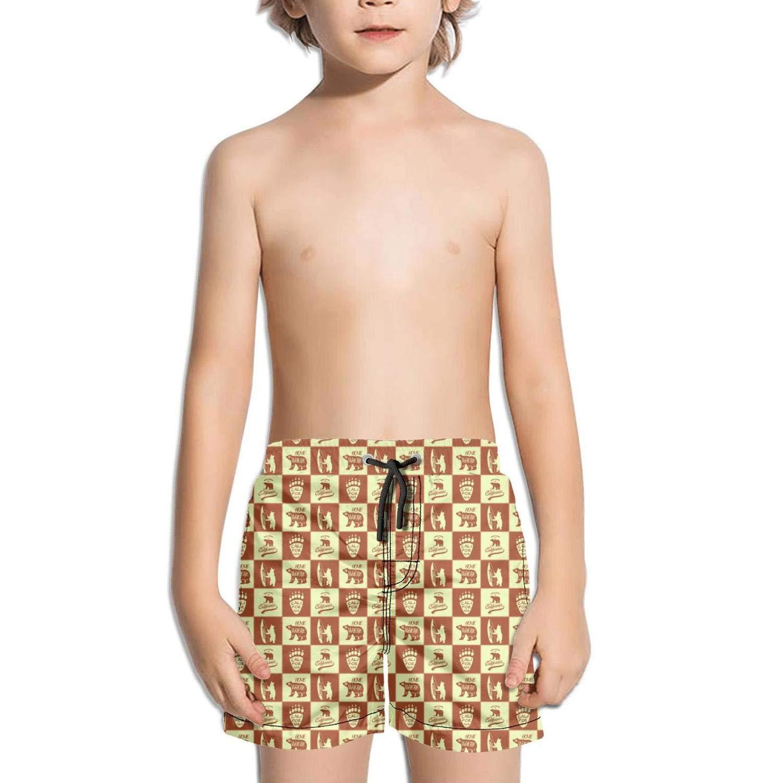 FullBo California Republic Bear Poster Little Boys Short Swim Trunks Quick Dry Beach Shorts