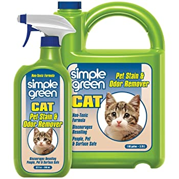 Simple Green 32 oz. & 1 gal. Enzyme Cleaner