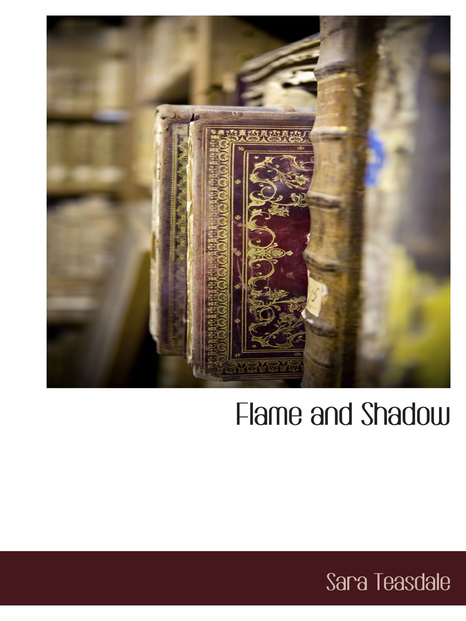 Read Online Flame and Shadow ebook