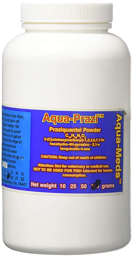Amazon com : Aqua Prazi Koi Care Pond Treatment Fluke