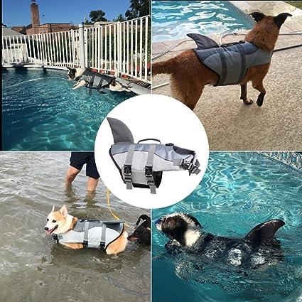 Chaleco salvavidas ajustable para perros con patrón de tiburón: Amazon.es: Productos para mascotas