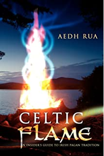 the celtic seers source book vision and magic in the druid tradition