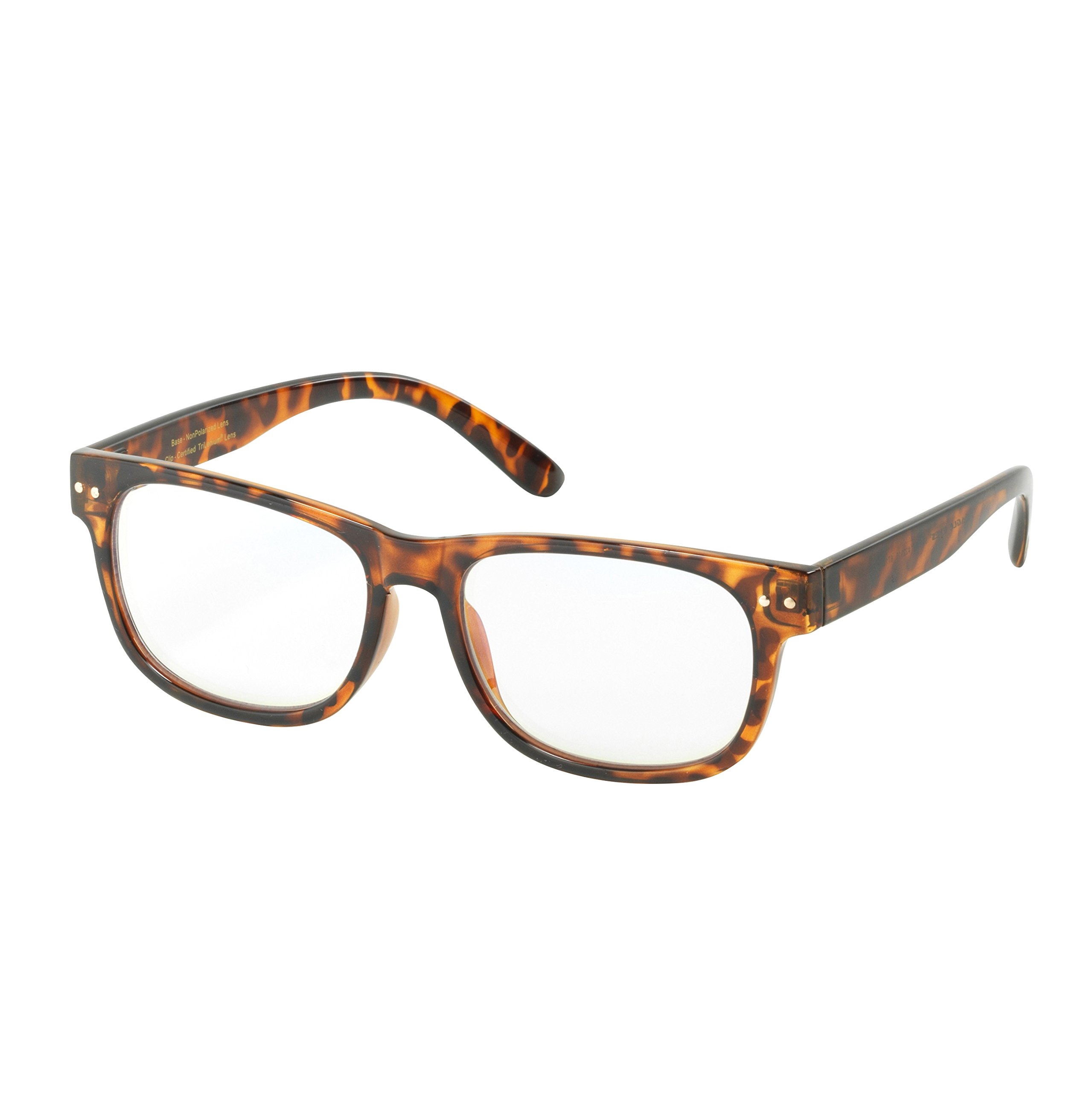 Eagle Eyes STARR Computer Glasses - Digital Glasses with Attachable Polarized Clip-Ons