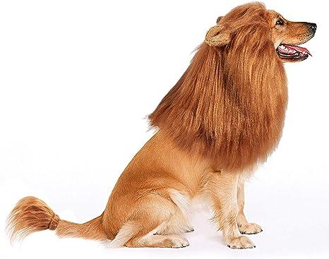 Bascolor Disfraz de Melena de león Halloween, Fiesta de Disfraces ...