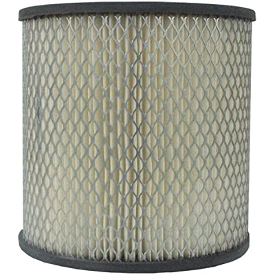 Luber-finer LAF1463 Heavy Duty Air Filter: Automotive